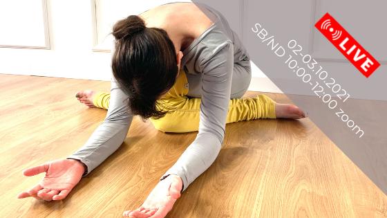 Yin Joga - Ciało fizyczne, energetyczne i emocjonalne